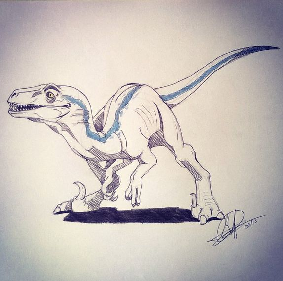 34 Best Images About BLUE The Velociraptor On Pinterest