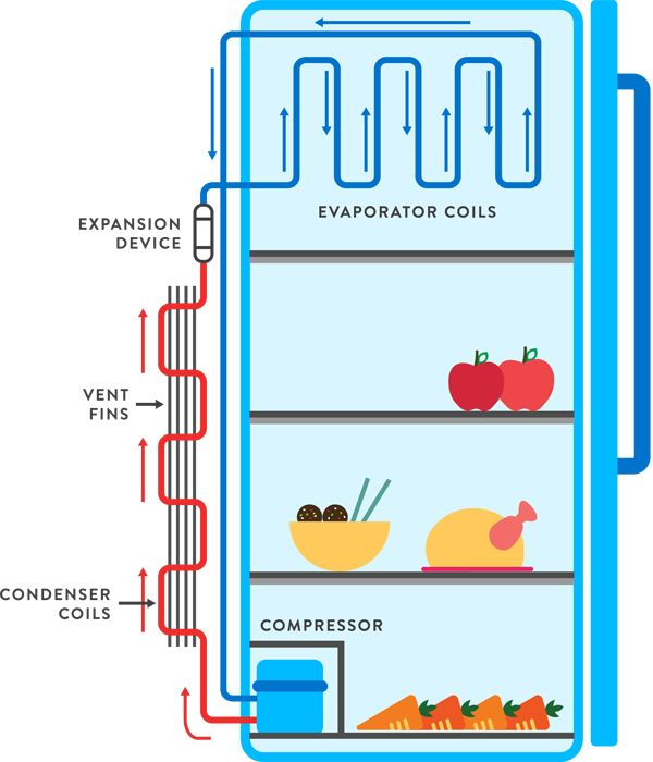 Fridge Circuit Diagram 1 Jpg 600 700 Climate Change Solutions Climates Refrigerator