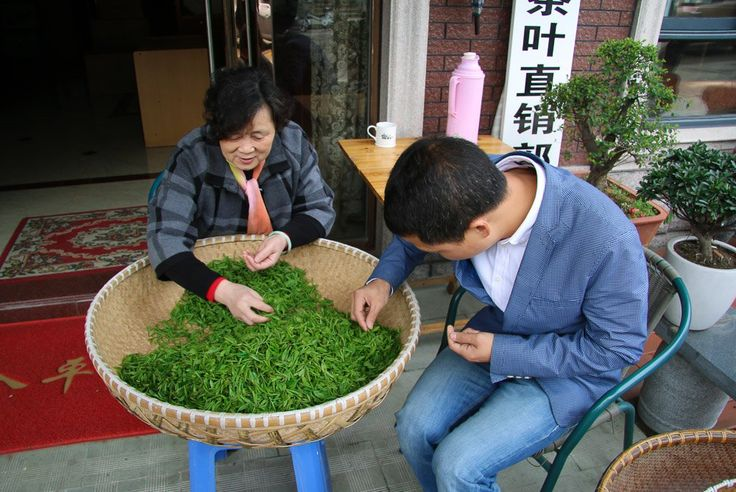 Hangzhou longjing tea drying process.