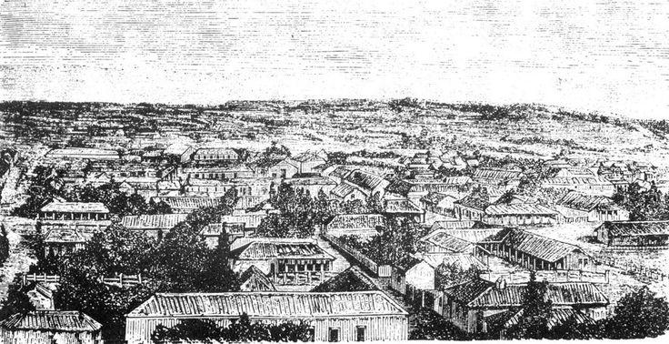 Arauco Antiguo