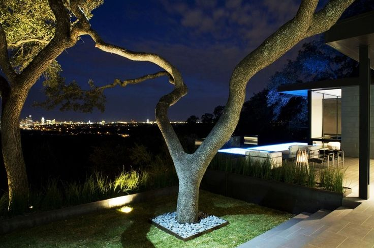Home Design, Unique Shaped Tree Growing Naturally On Green Turfs Next To Skyline House Outdoor Patio Area: Captivating Modern House Design Ideas with Infinite Swimming Pool