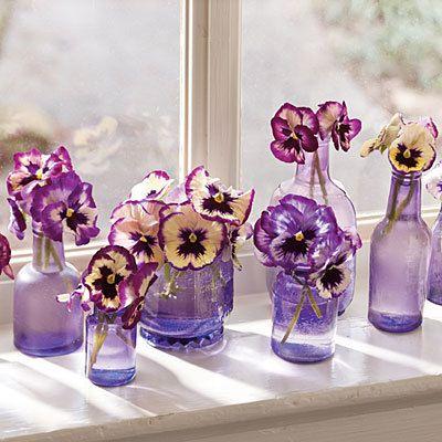 Pansies in purple bottles