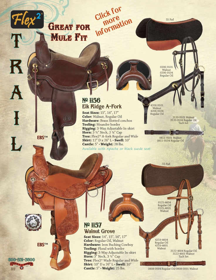 Circle Y Saddles - Western Saddles, Trail Riding Saddles, Barrel Sadles, Roping Saddles #western #show  saddle #circle #y #western #saddles #ranch #equipment #buy #horse #tack #  youth #show #saddles #ad #western #show #bridle #ads #saddles #tack #western  show #saddle #dale #chavez #show #saddles #horse #western #show #saddle #circle  y #saddles #horse #saddle #shoppers #free #shipping #low #prices #quality  circle #y #saddles #show #saddle #western #pleasure #horse #show #saddles