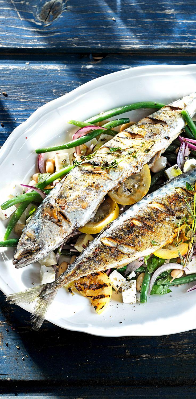 Makrele vom Grill mit griechischem Bohnensalat und Patros Leicht #patros #käse #patroskochbaris #feta #fetacheese #makrele #fisch #fish #bohnen #beans #leicht #rezept #recipe