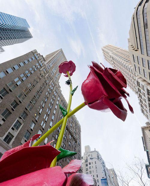 new york valentine by carmen reid