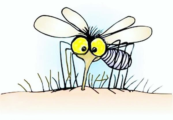 Como Prevenir Y Tratar Picaduras De Mosquito En Embarazadas Y Ninos Picaduras De Mosquitos Repelente De Mosquitos Casero Picaduras