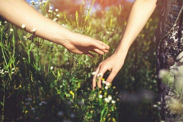 В обращении друг с другом старайтесь друг друга ободрять, а не тоску наводить глупыми суждениями своими.  Преподобный Амвросий Оптинский