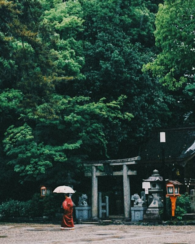 your life,my life #VSCO #VSCOX #vscoxselects #vscofeedback #ACADEMY #Kyoto #Japan #street #snap #people #human #life #blueprint #landscape #nature