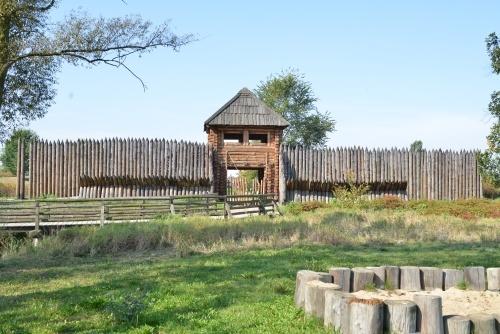 Gród Piastowski w Kaliszu Zawodziu