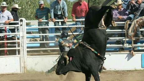 The Vancouver Humane Society is calling for the cancellation of an upcoming bull riding event in the North Okanagan, calling the practice 'inhumane.'