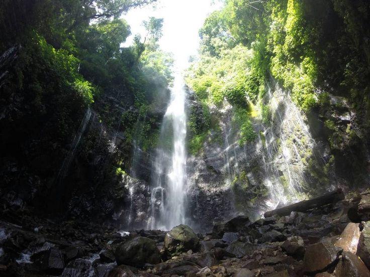 Curug lawe dan Benowo berada dalam kawasan perkebunan cengkeh di lereng pegunungan. Letaknya yang tersembunyi di dalam hutan akan menambah kesan hijau dan alami.[Photo by alooisiawpm.blogspot.co.id/]