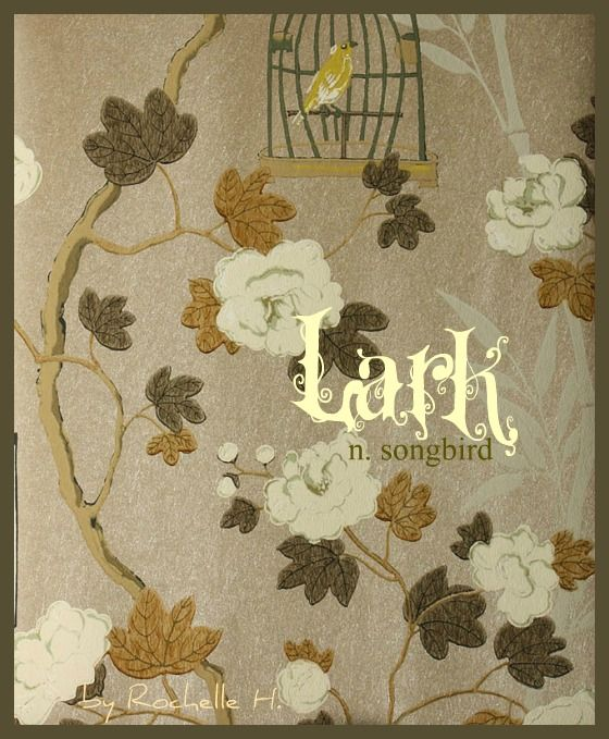 Baby Girl Name: Lark. Meaning: Songbird; Cheerful. Origin: English. http://www.pinterest.com/vintagedaydream/baby-names/