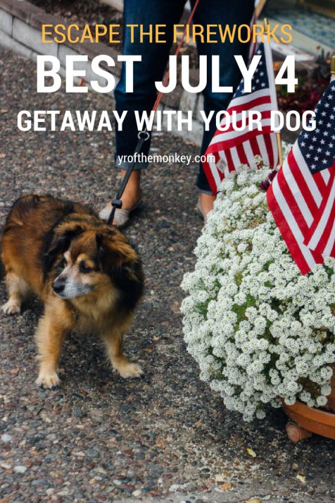 Where can you escape the fireworks and have a peaceful Fourth of July with your dog? The ultimate guide to Carmel, CA tells you everything you need to know.