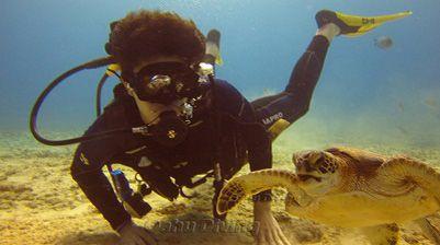 First Time Scuba Diving Oahu - Beginner Diving Hawaii, Discovery Scuba   Diving Honolulu