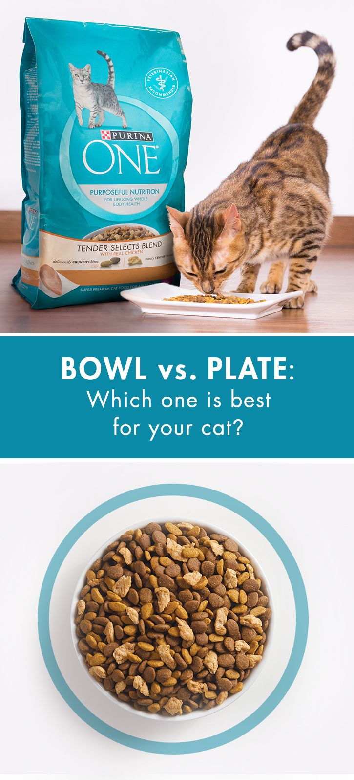When serving Purina ONE Tender Selects Blend With Real Chicken, use a dish that works with your cat's whiskers, like a shallow bowl. Choose a dish large enough to hold a day's worth of food, with a lip full enough to keep food contained while letting your cat observe the room. Have a messy eater? Try a plate large enough to catch stray kibble. Get a bag of Tender Selects Blend With Real Chicken today, and feed her a delicious blend of crunchy bites & meaty tender morsels.