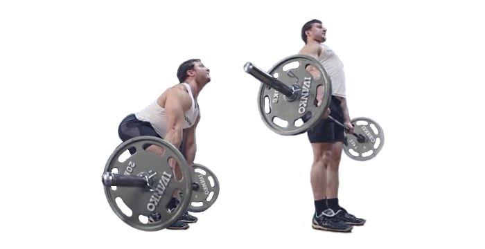 Становая тяга — базовое многосуставное упражнение в бодибилдинге для развития бицепса бедра, квадрицепсов, выпрямителей позвоночника и широчайших мышц спины