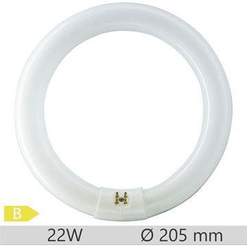 Tub fluorescent circular Philips Master TL-E Circular 22W, G10q, tub C-T9, 9000 ore, lumina rece