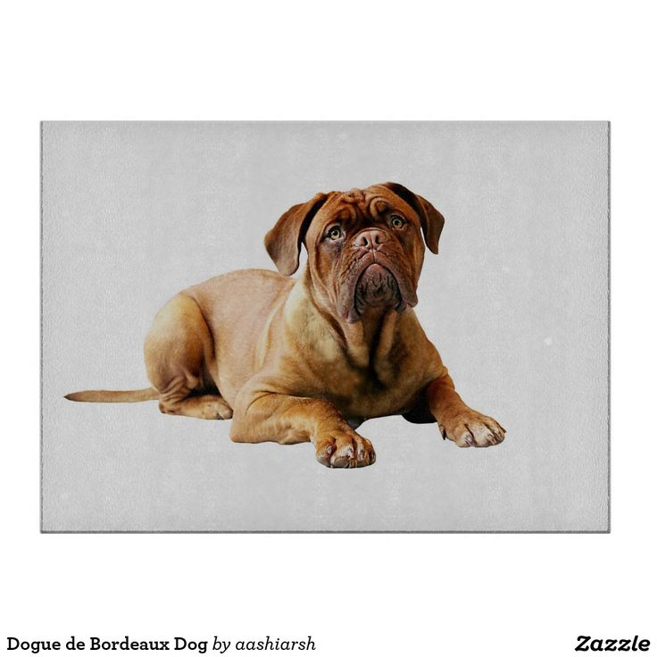 #DoguedeBordeaux #Dog #CuttingBoard #kitchen #kitchenware