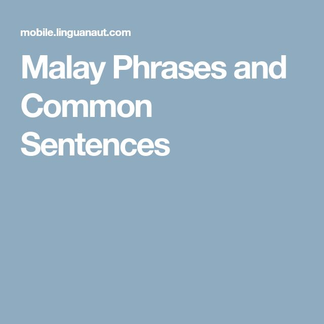 Malay Phrases and Common Sentences