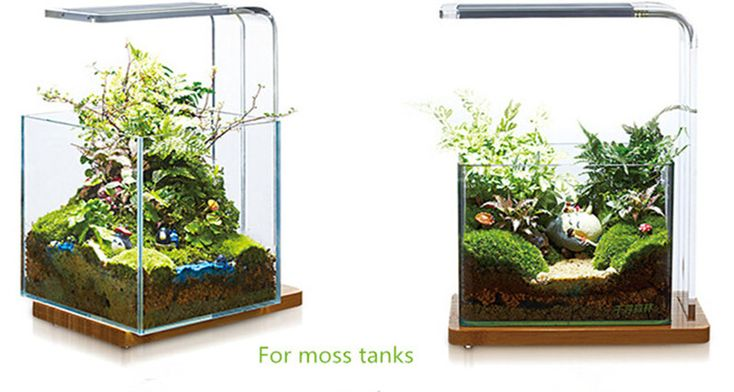 Aquatic Landscaping Led Aquarium Light For Wabi Kusa Moss Tank Micro Landscape And Potted Plant Tank , Find Complete Details about Aquatic Landscaping Led Aquarium Light For Wabi Kusa Moss Tank Micro Landscape And Potted Plant Tank,Led Aquarium Light,Aquatic Landscaping Led Aquarium Light,Aquarium Light For Wabi Kusa Moss Tank Micro Landscaping And Potted Plant Tank from -Guangzhou Fischer Chemical Co., Ltd. Supplier or Manufacturer on Alibaba.com