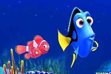 """Which """"Finding Nemo"""" Character Are You?"""