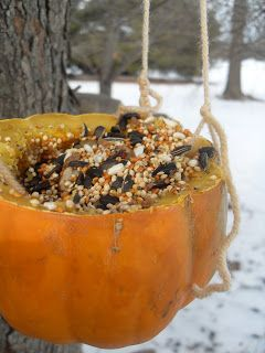 With all of the snow we have had lately, our little feathered friends came into our thoughts. We already have the traditional bird feeder full of black sunflowers, but we wanted something more, something that required a little more effort on our part…. hollowed out acorn squash full of seed, cut up apples and oranges, … … Continue reading →