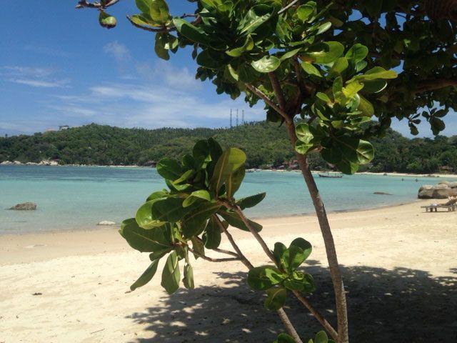 Op+avontuur+naar+de+mooie+stranden+van+Koh+Tao