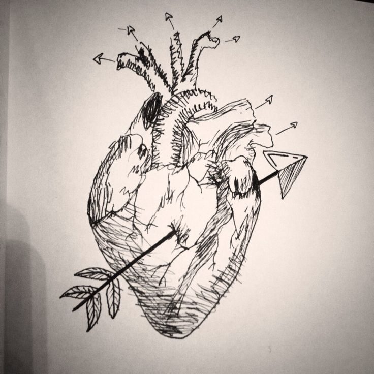 tried to draw a realistic heart for the first time