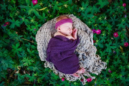 Denver Newborn Photographer   Newborn Photographers   Newborn baby photography ideas and inspiration