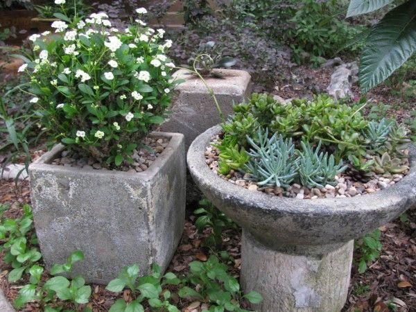 Image result for contemporary succulent gardens