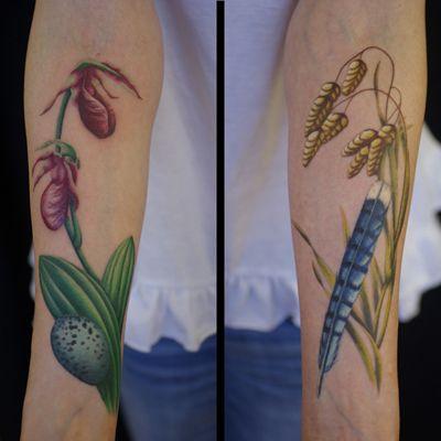 Marie Brennan - Diving Swallow Tattoo