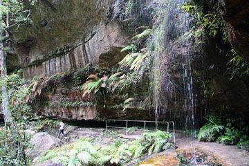 Grand Canyon Loop - Bushwalking NSW