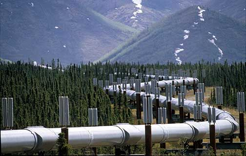 Alaskan pipeline... not all pipelines are this obvious. Call 811 before you dig to have underground lines marked.
