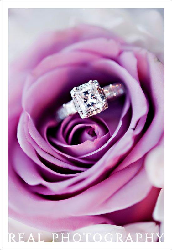 wedding ring photo inside rose