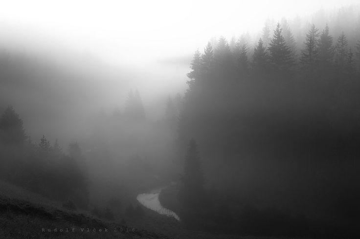 Landscape/Fog