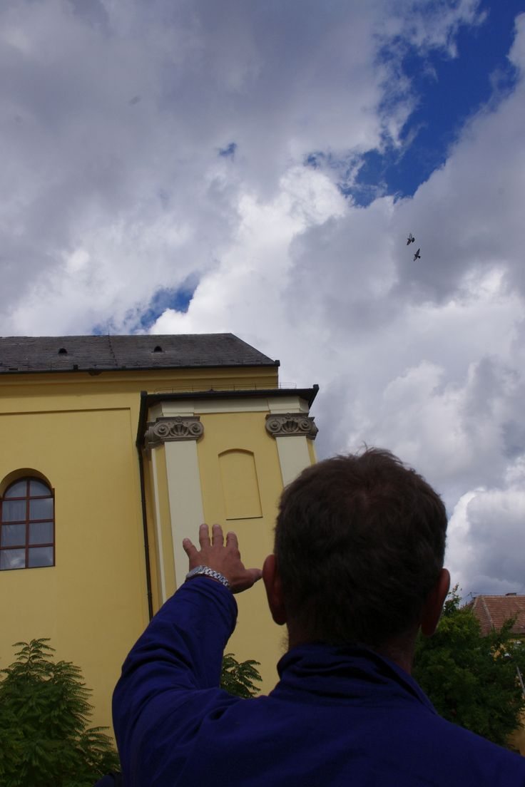 Adaptation of the Dutch Monumentenwacht preventive heritage management system in Eger (www.herman-project.eu)