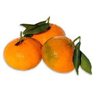 Semplice procedimento per ottenere un liquore allegro e profumato di mandarini di sicilia.