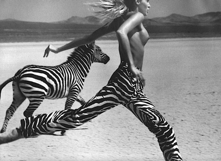 Zebra inspiration| Zebra pants