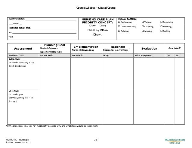 blank nursing care plan templates - Google Search