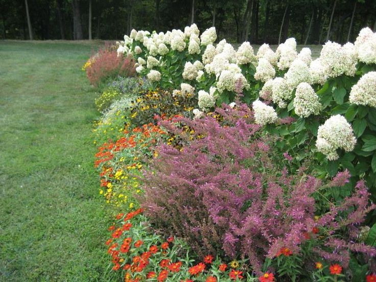 perennial flowers garden httplovelybuildingcomhow to get flowers garden design ideas flower garden design ideas pinterest gardens
