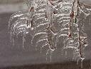 ice storm 1998 watertown ny - Google Search