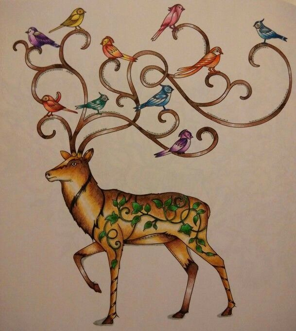 Enchanted Forest Coloring Book Beautiful 1000 Images About Enchanted Forest  Deer … Enchanted Forest Coloring Book, Enchanted Forest Coloring, Forest  Coloring Book