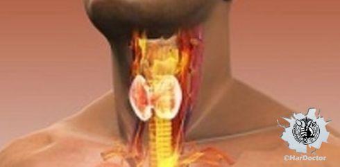 In arrivo nuove terapie per il cancro della tiroide
