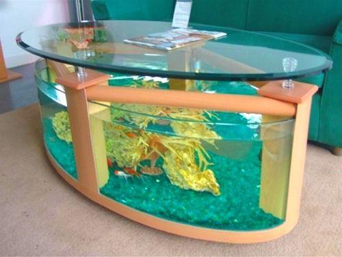 1000 Ideas About Cheap Fish Tanks On Pinterest