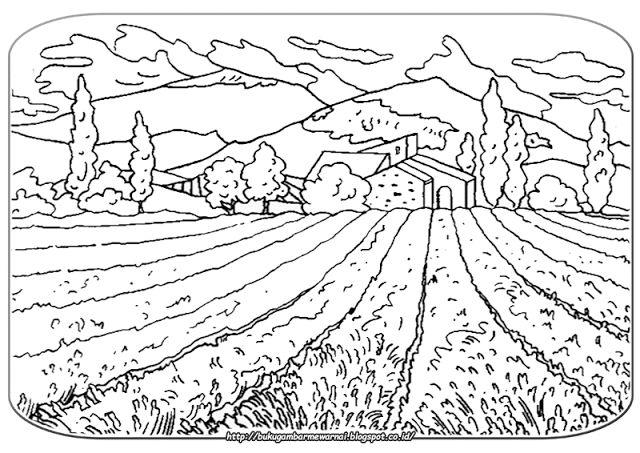 Gambar Mewarnai Pemandangan - Gambar di atas adalah gambar mewarnai pemandangan alam pedesaan. D...