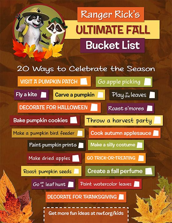 Ranger Rick's Ultimate Autumn Bucket List -- Pumpkins. Apple cider. Hayrides. There is so much to love about fall!