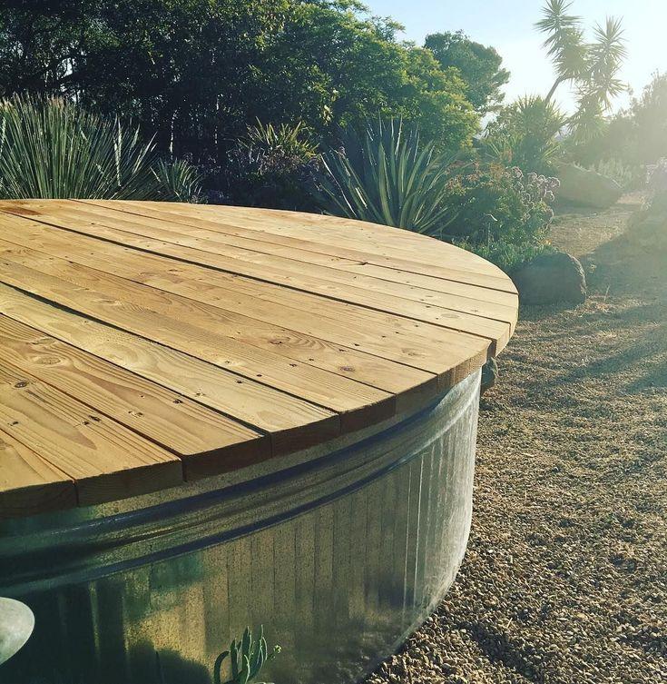 18 best Backyard Dreams- Gunite Pool in Brighton, MI images on ...