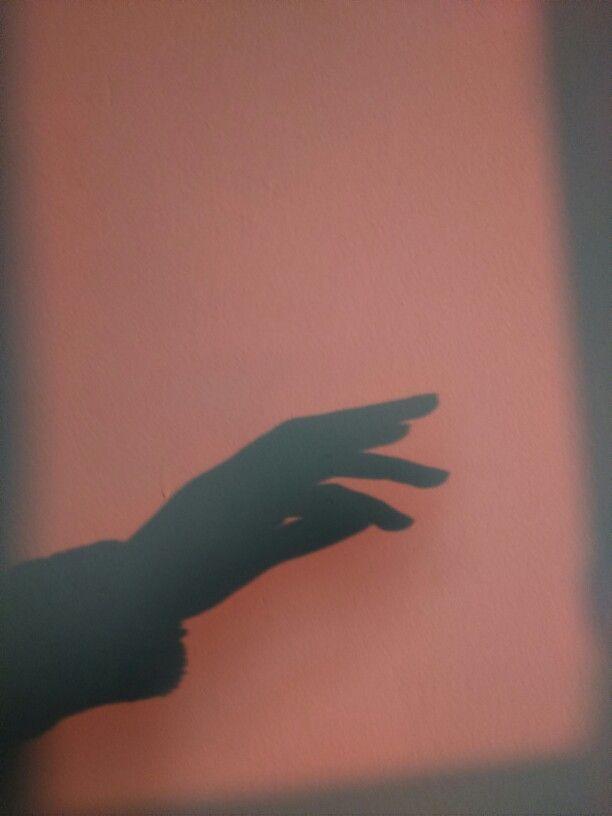A magical hand shadow...