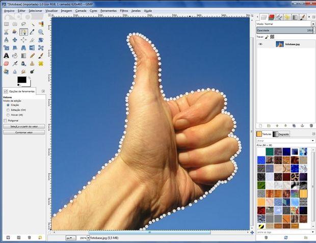 Parte da imagem que será mantida selecionada com ferramenta Vetor (Foto: Reprodução/Raquel Freire)