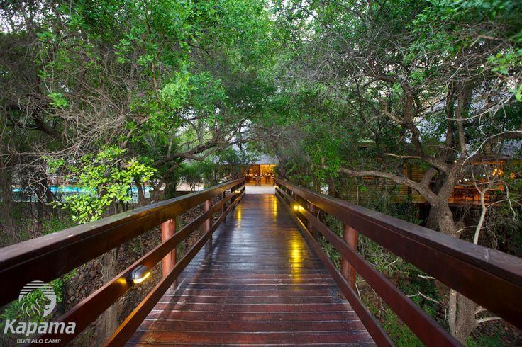 Kapama Buffalo Camp Wooden Deck Walkway